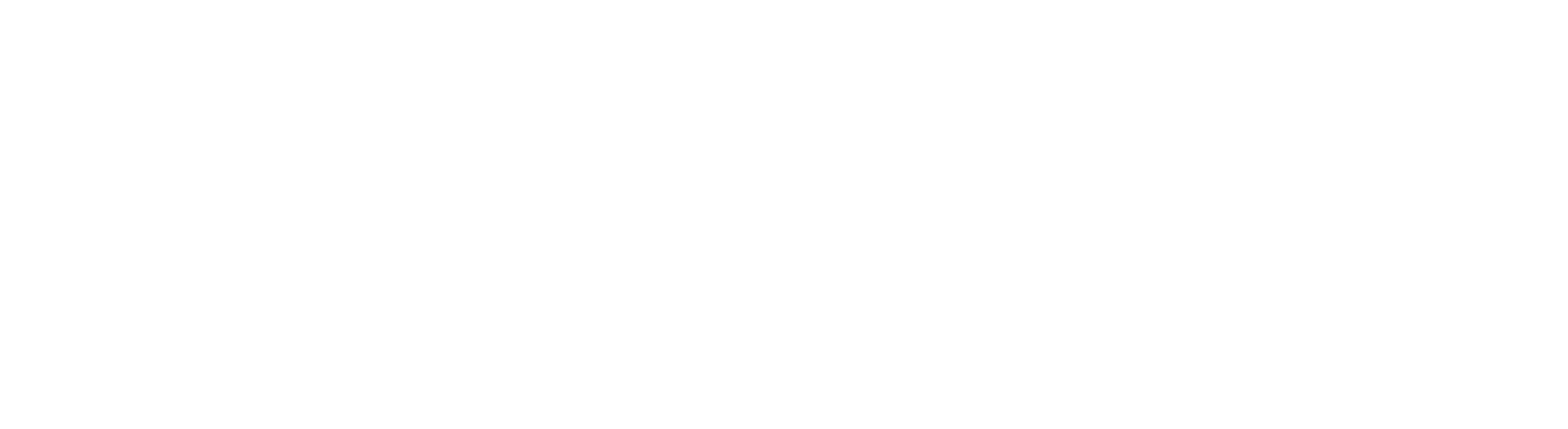 VERPAN logo white