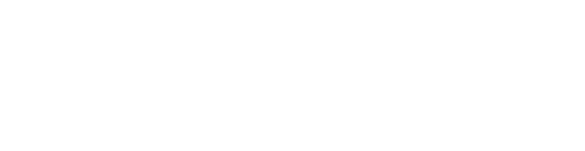 WEB Smal Vistosi Logo